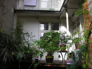 3. Huis 018