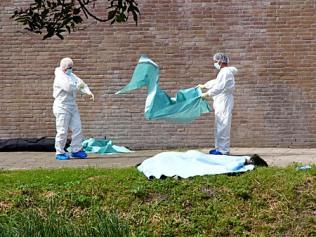 drenkeling bij voormalig Terra College Beresteinlaan 3 juli 2010 Van Dijk