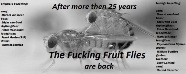 cropped-fruitflyfuck21